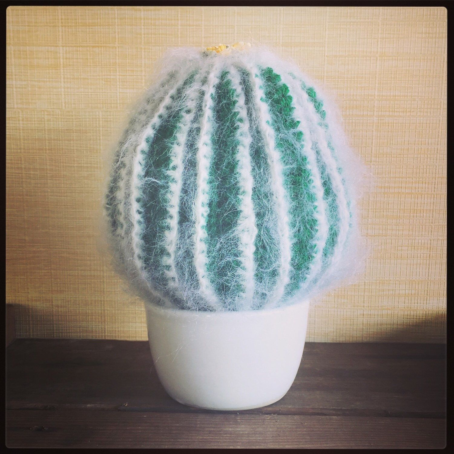 Office Warming Gift Large Fluffy Crochet Barrel Cactus House Warming,