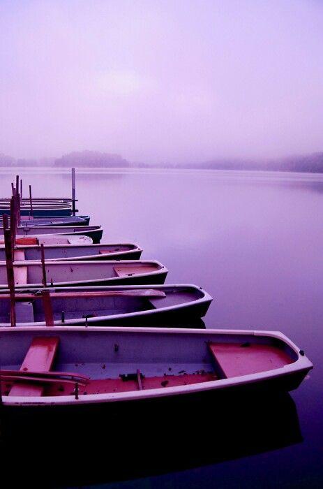 보라색 호수
