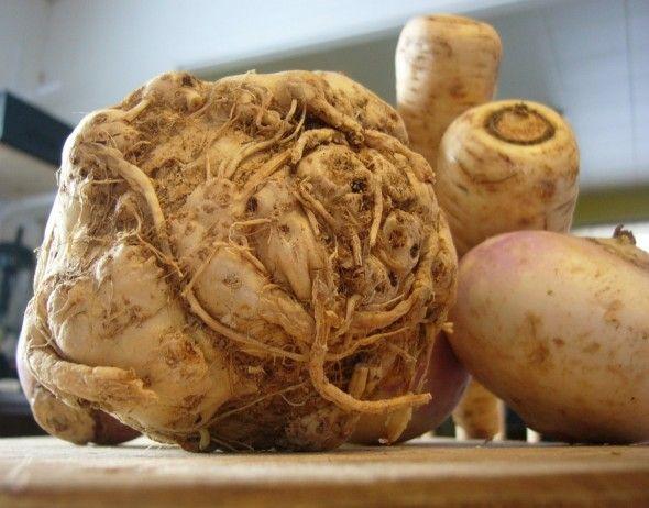 Comment cuisiner cru des l gumes racine betterave c leri rave topinambour patate douce - Comment cuisiner des panais ...
