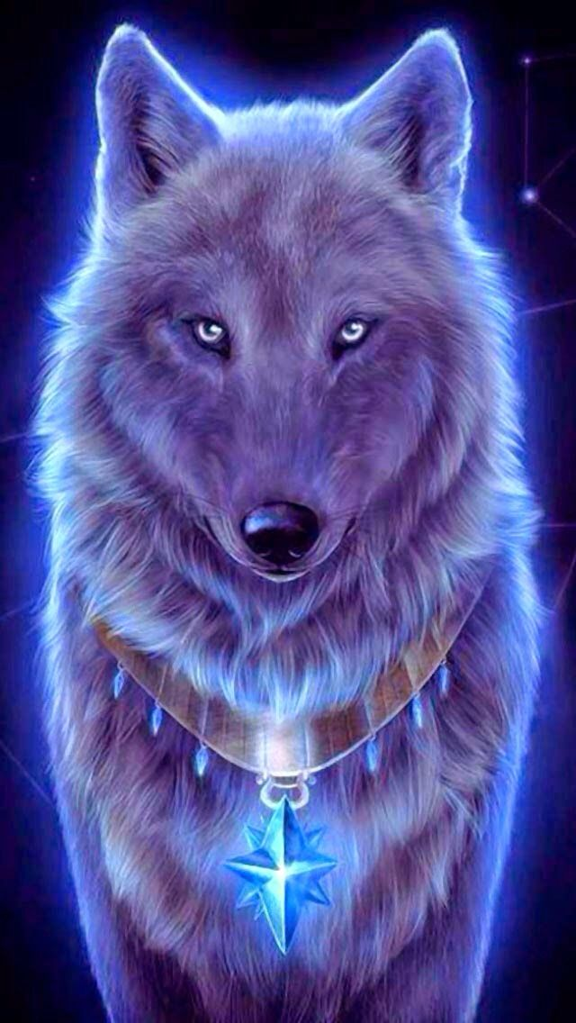 if i were a wolf that would be me wolfs please pinterest wolf animal and drawings. Black Bedroom Furniture Sets. Home Design Ideas