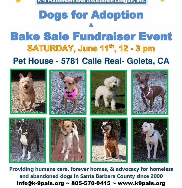 K 9 Pals Dogs For Adoption And Bake Sale Fundraiser Event On