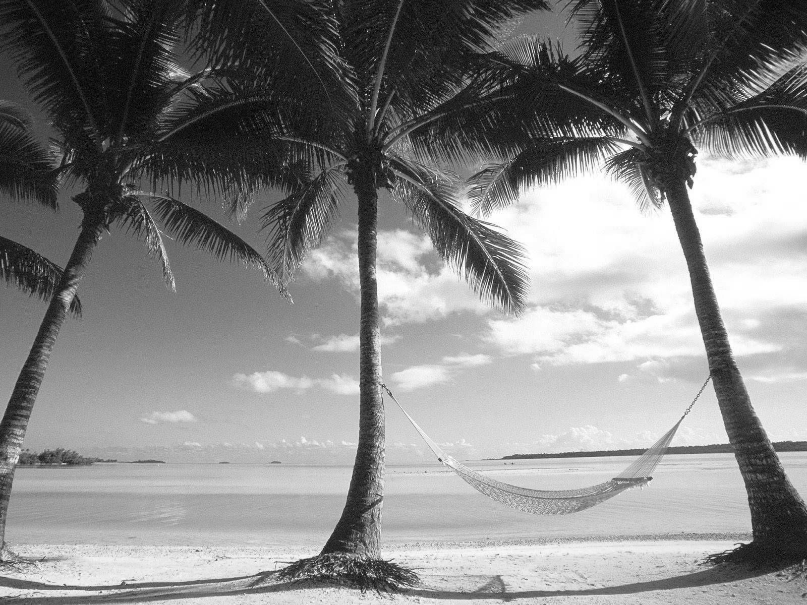 Black And White Beach Landscape Hd Wallpapers Pack Beach