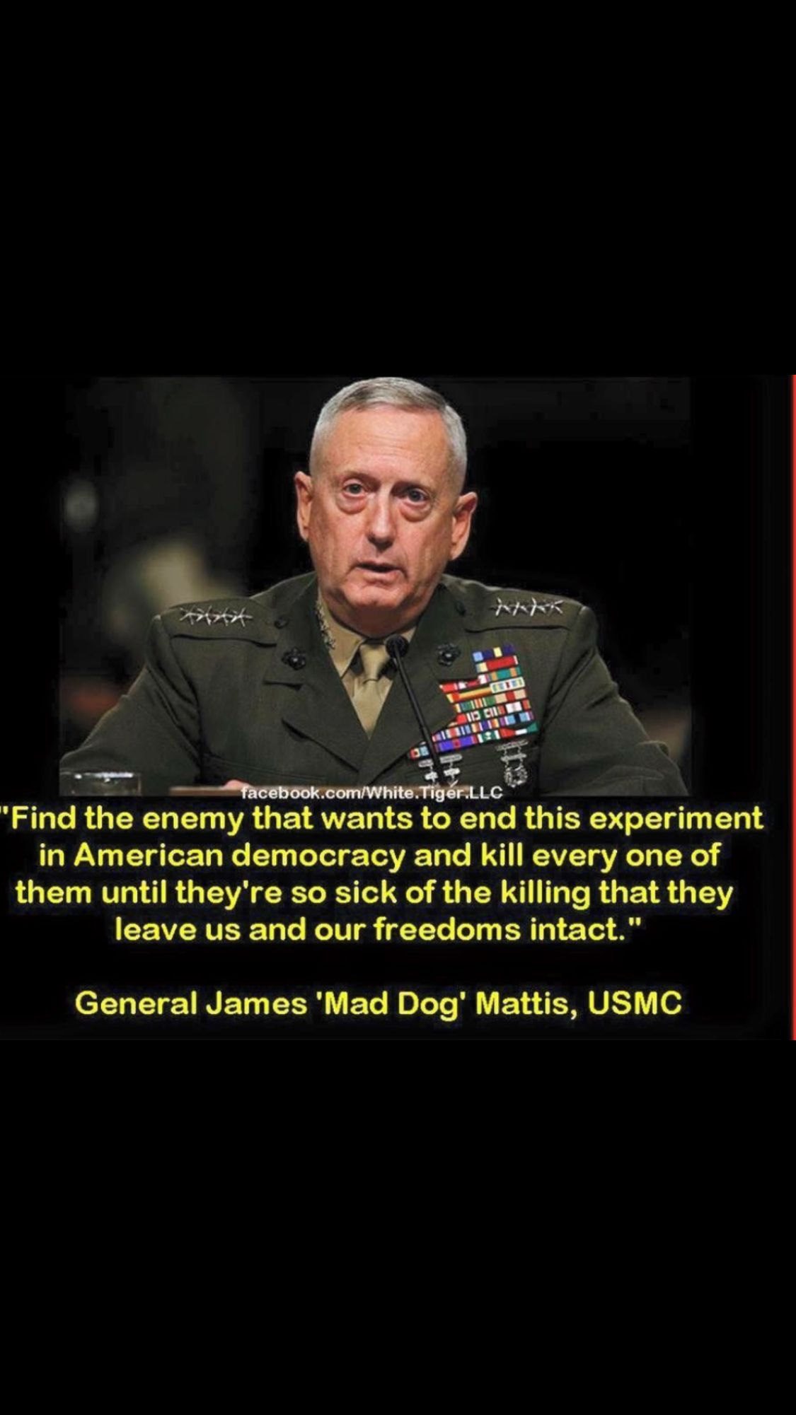 Pin by Frank Bunch on Mad dog MATTIS   Movie posters, Movies