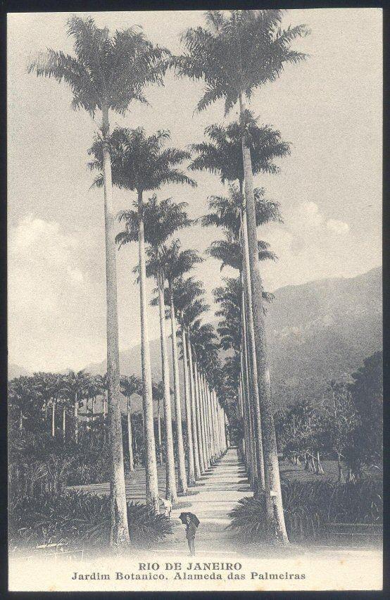 Marc Ferrez - Jardim Botânico - R$ 80,00 no MercadoLivre