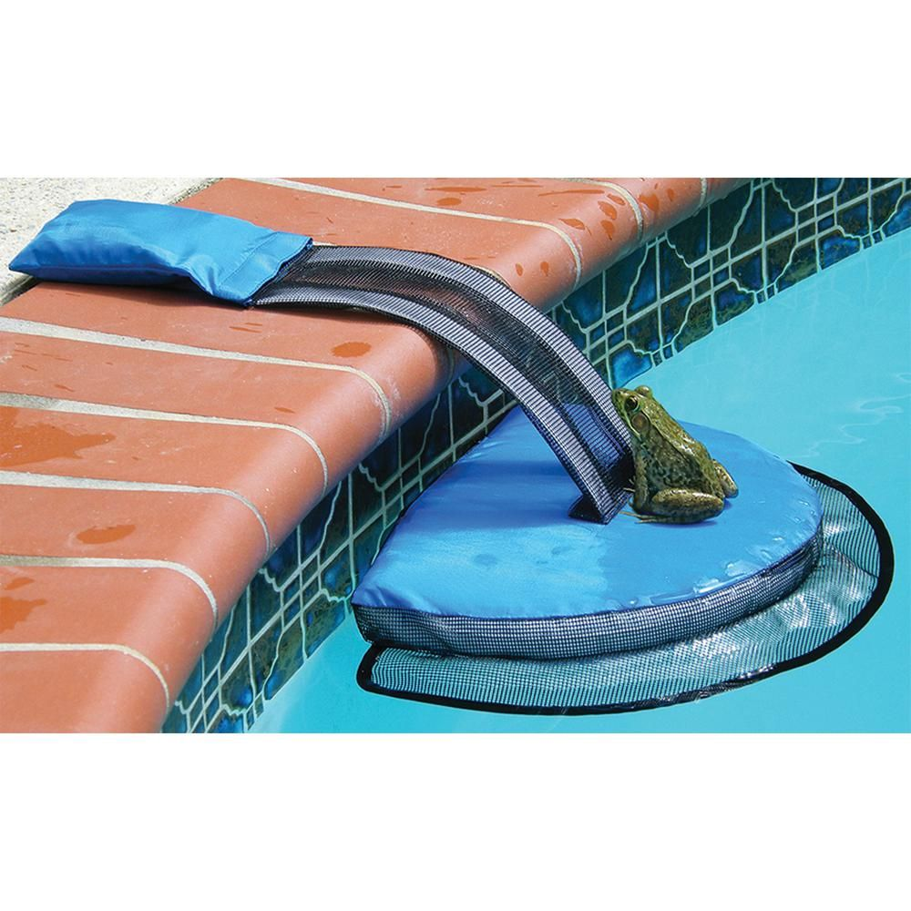Blue Froglog Critter Saving Escape Ramp 70200sl The Home Depot Swimline Pool Accessories Pool Supplies