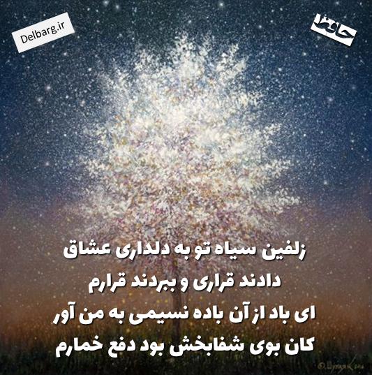 Pin On Mystic Poets عارفان شاعر