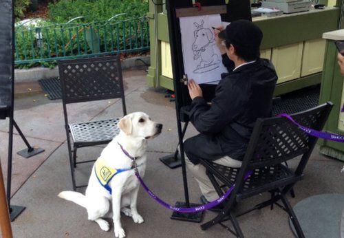 El perro que esperó pacientemente por su caricatura en Disney