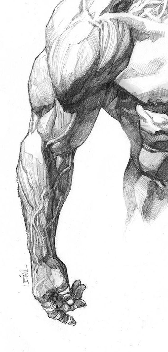 Уроки рисования | Figure drawing reference | Pinterest | Anatomía ...