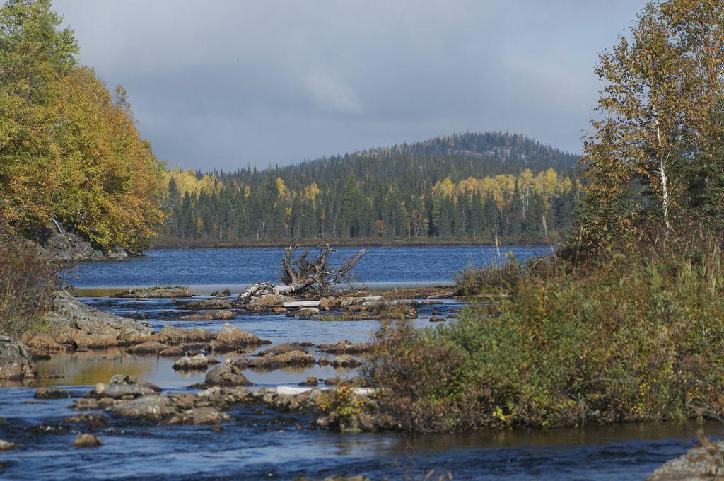 Rivière du lac Balise