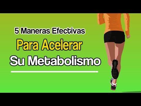metabolismo lento causas - ¿Qué es?