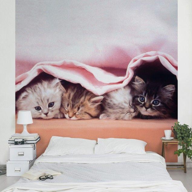 Kindertapete - Sugar-Sweet - Vlies Fototapete Quadrat Pinterest - ideen fur leseecke pastellfarben
