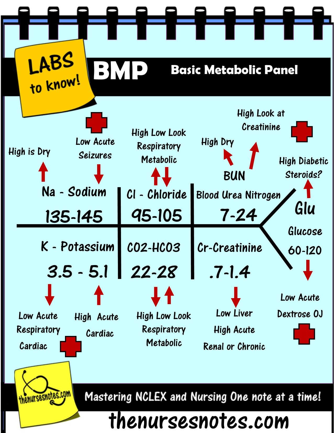 BMP Chem7 Fishbone Diagram explaining labs - From the Blood Book ...