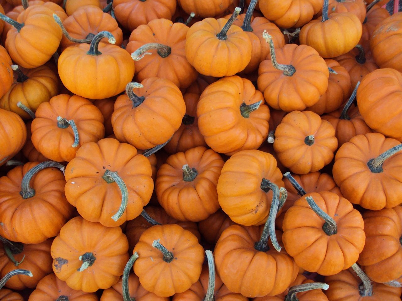 Decorating Your Home For Fall New Homes Ideas Fall Wallpaper Holiday Wallpaper Iphone Wallpaper