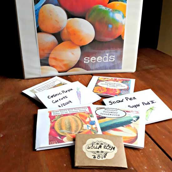 DIY Seed Packets And Seed Storage Binder
