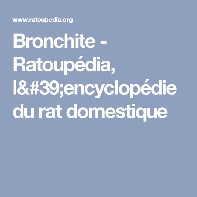 Bronchite - Ratoupédia, l'encyclopédie du rat domestique