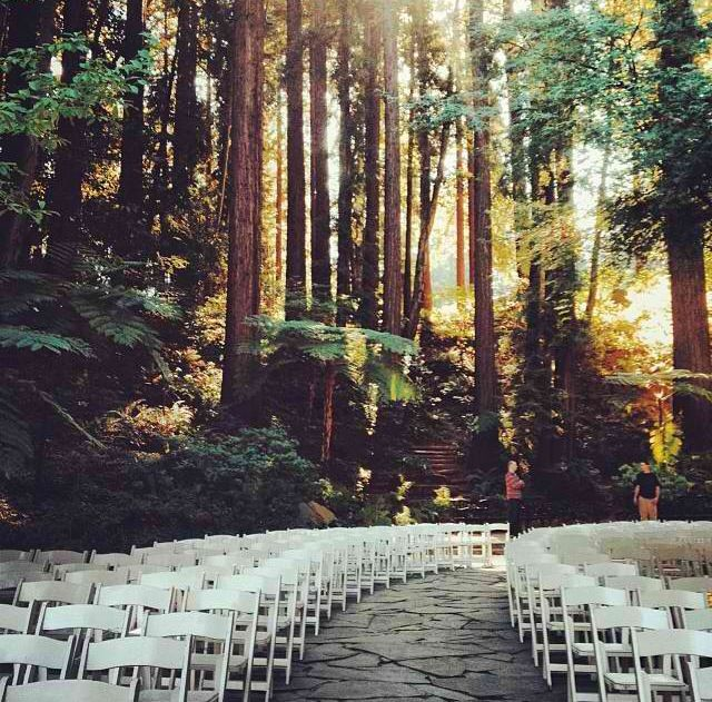 Enchanted Forest A Wedding You Will Only Find In The Northwest Being Surrounded By Giant Sequoias Give Feeling Of Intimately Secluded