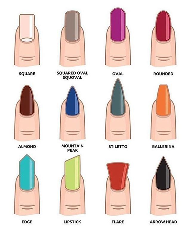 Different artificial nail shapes. | The Cute Stuff For Your Nails ...