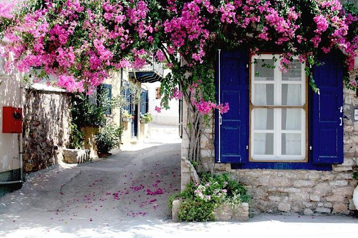 Bougainvillea archway - Galixidi, Greece
