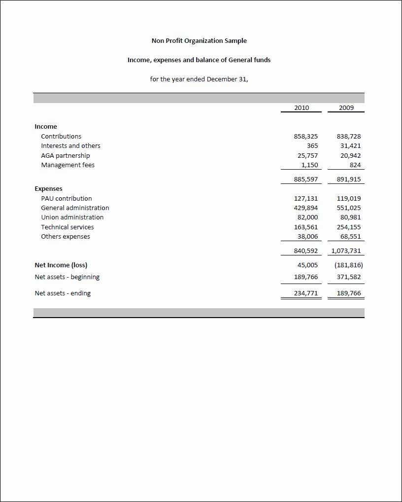 50 Luxury Non Profit Financial Statement Template In 2020