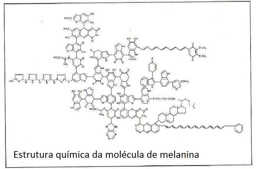 O ankh origem africana do eletromagnetismo nur ankh amen estrutura qumica da molcula de melanina nur ankh amen african origin of fandeluxe Gallery