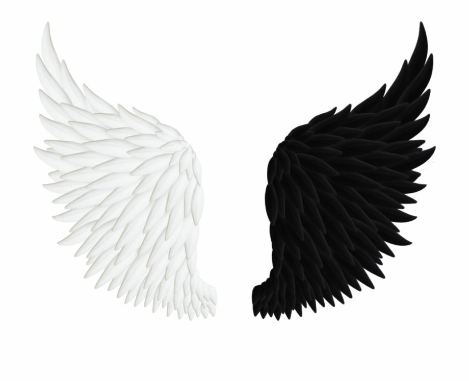 Angels Wings Png Angel Wings Black And White Transparent Png Image For Free Download Explore More High Quality Angel Wings Drawing Wings Png Angel Wings Png
