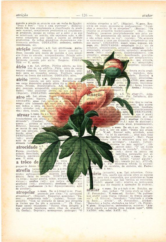 Wall Art Vintage Botanical Illustration Peony Print On Vintage Book Page Home Wall De Botanical Illustration Vintage Botanical Illustration Vintage Botanical