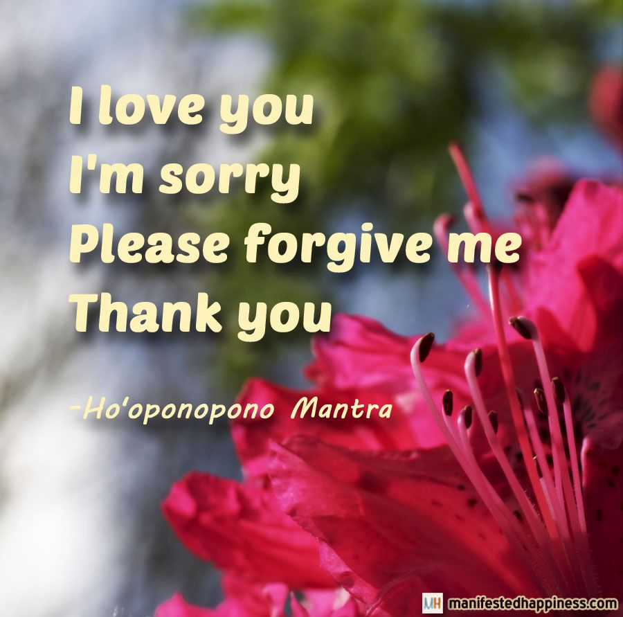 I Love You I M Sorry Please Forgive Me Thank You Ho Oponopono Mantra Love Gratitude Healing Apologizing Quotes Apology Quotes For Him I Forgive You