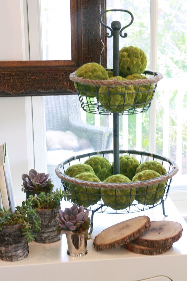 10 Ways To Decorate With Green Moss: Moss Balls In Tiered Wire Basket With Succulents In Tree Bark