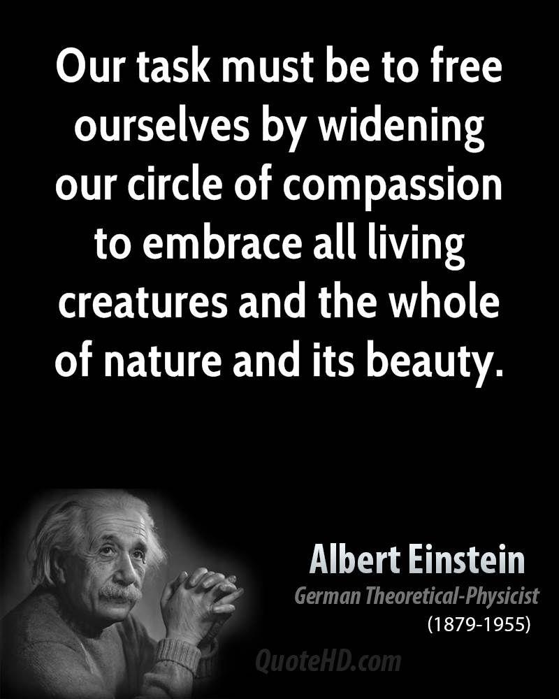 Albert Einstein Funny Einstein Quotes Einstein Quotes Albert Einstein Quotes