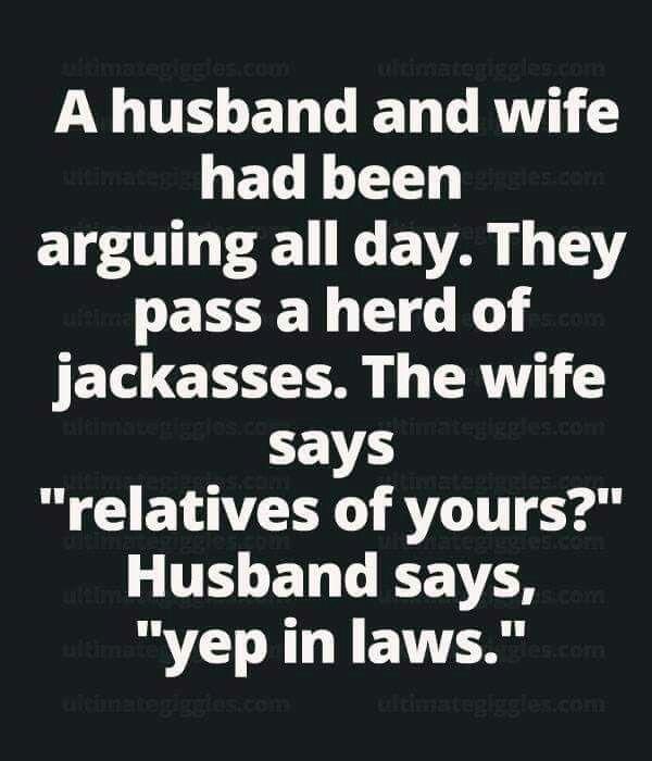 Jack ass jokes