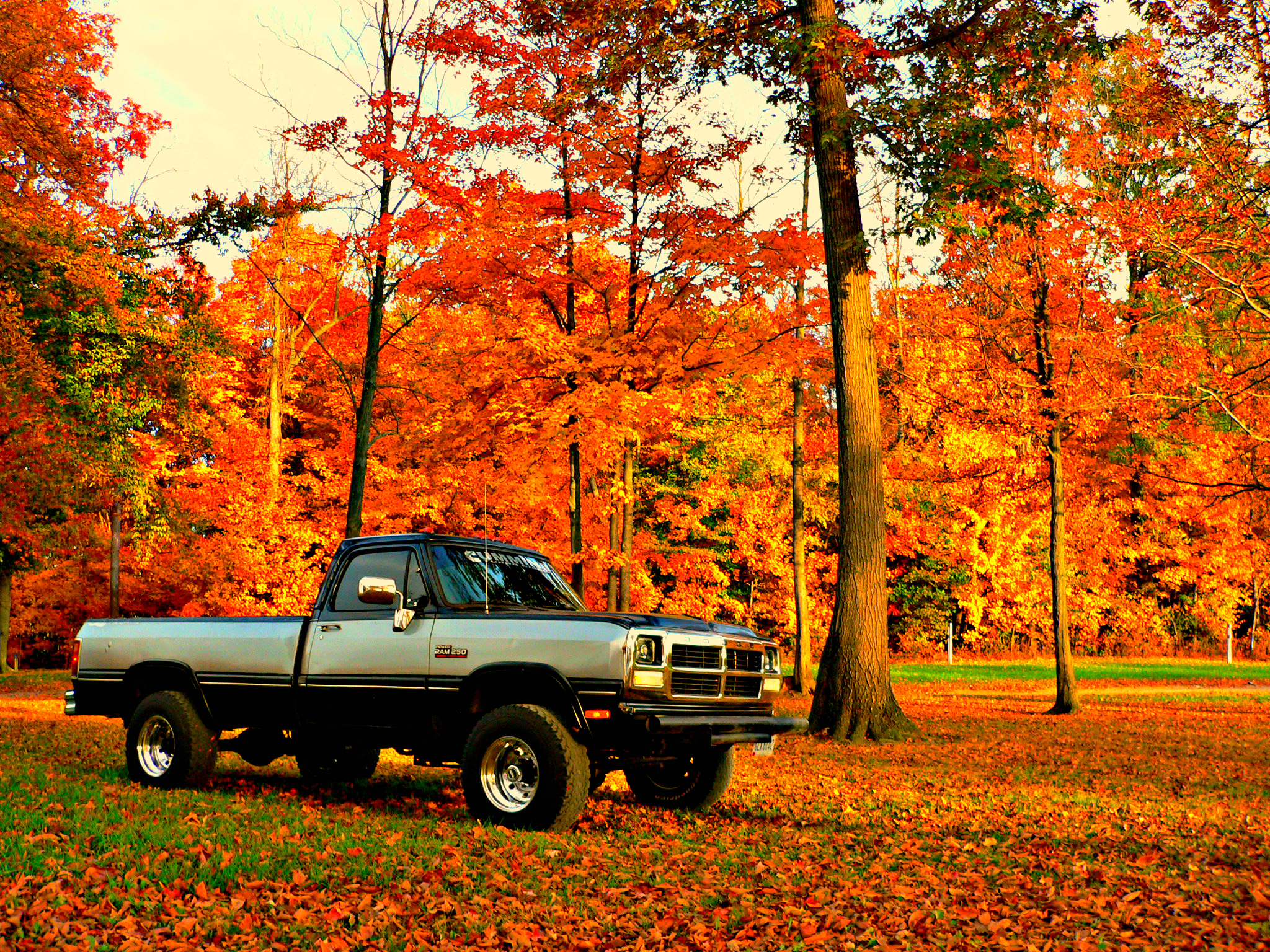 1991 5 Dodge W250 Cummins On A Fall Day In Ohio Dodge Cummins Diesel Dodge Cummins Cummins