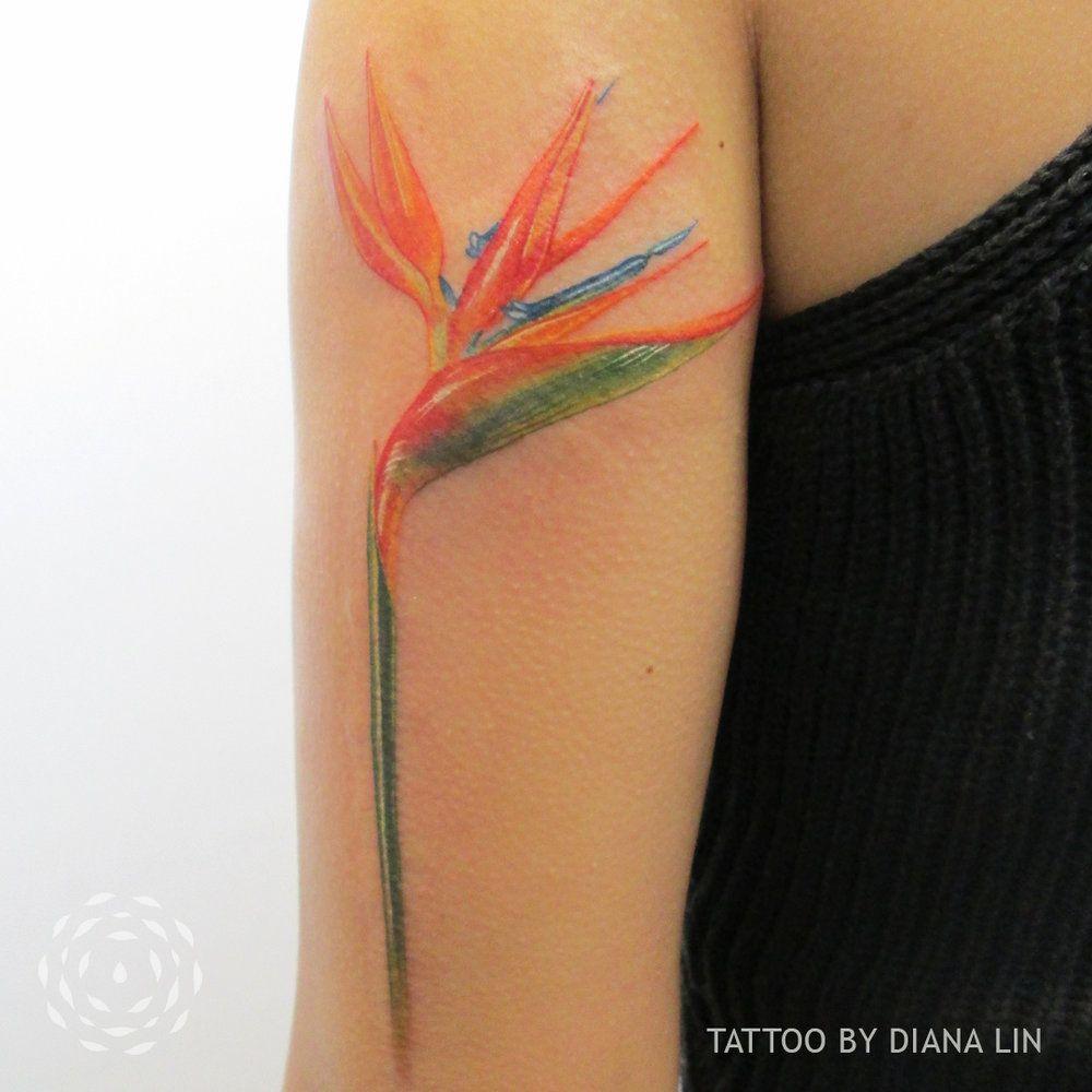 Image result for bird of paradise flower tattoo Тату