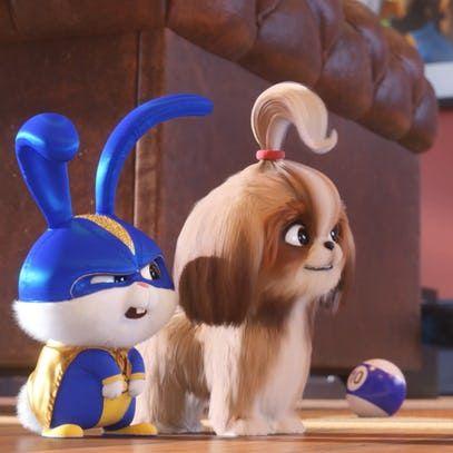 The Secret Life Of Pets 2 Trailer Time To Meet Tiffany Haddish S Daisy