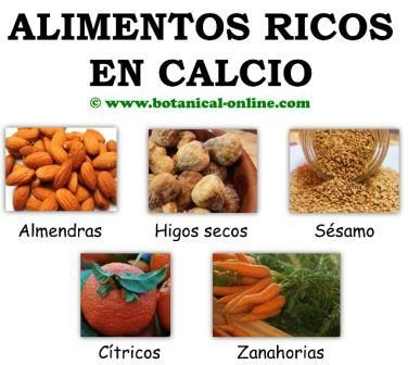 Alimentos ricos en calcio para la osteoporosis salud - Alimentos que tienen calcio ...