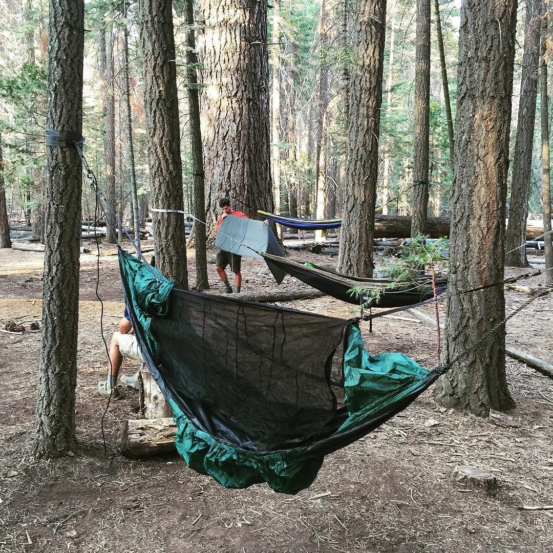 Yosemitenps clarkhammocks camping treescape treescape