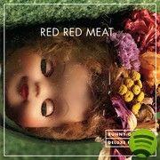Red Red Meatin Bunny Gets Paid on päätynyt soimaan aina allergiakauden aamuina jo vuodesta 2008 kun tämän helmen löysin. Arthur Rimbaud yhdistää kodeiiniövereissä grungea, countrya ja folk-nyrjähdystä. Lopputulos on kummallisen kaunis.