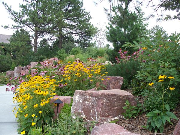 colorado landscape landscaping