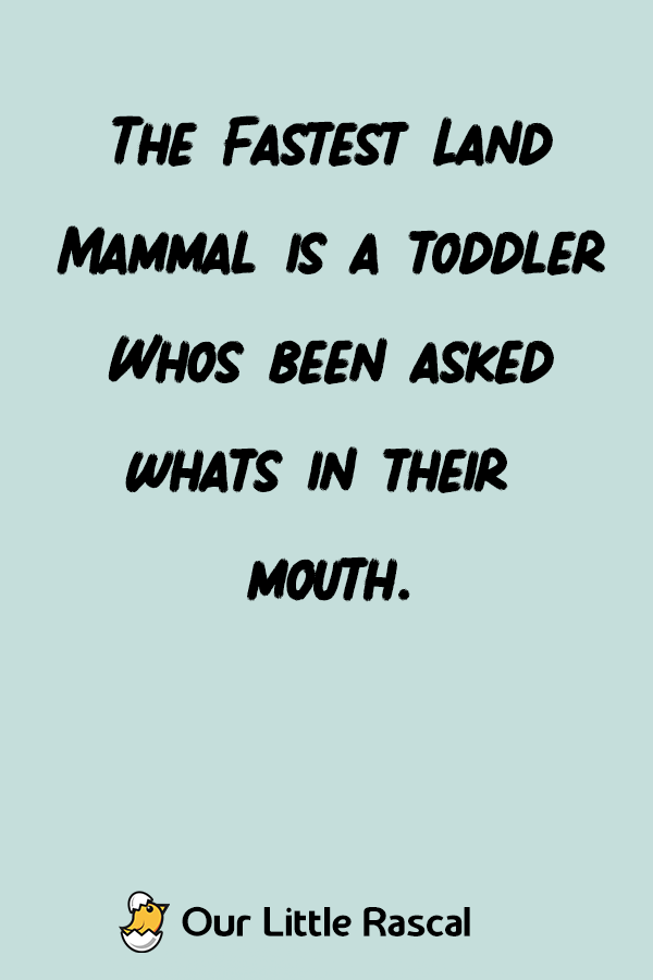 a7e6a5265409 The fastest land mammal is a toddler who s been asked whats in their ...