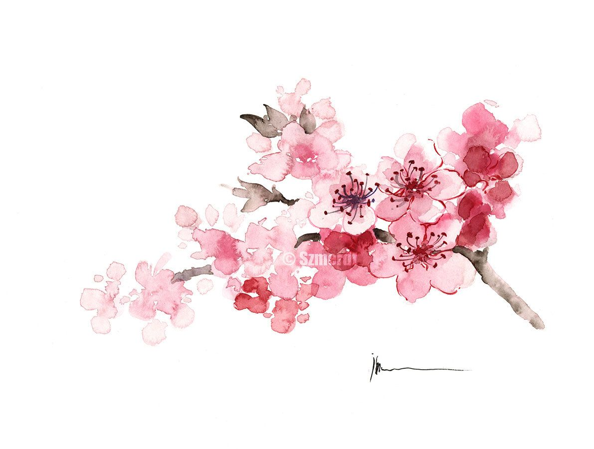 Cherry Blossom Painting Pink Tree Blooming Branch ...