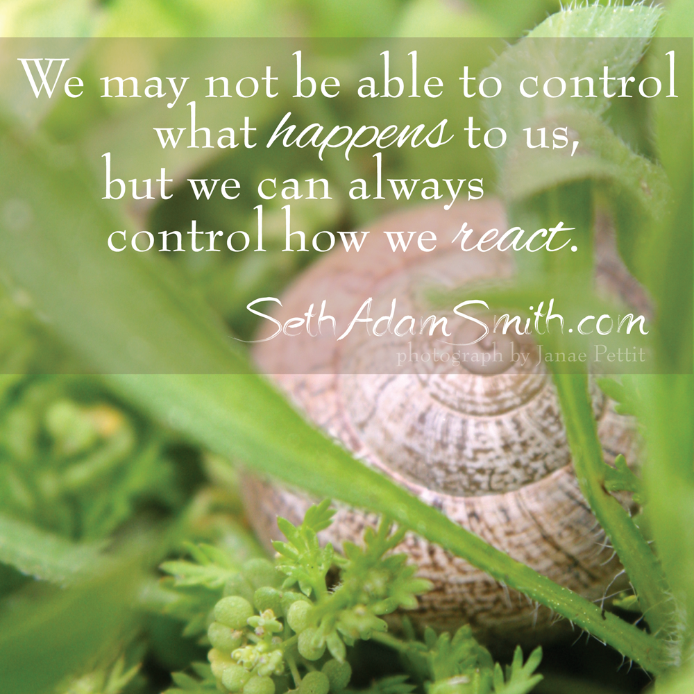 """We may not be able to control what happens to us, be we can always control how we react."" - Seth Adam Smith"
