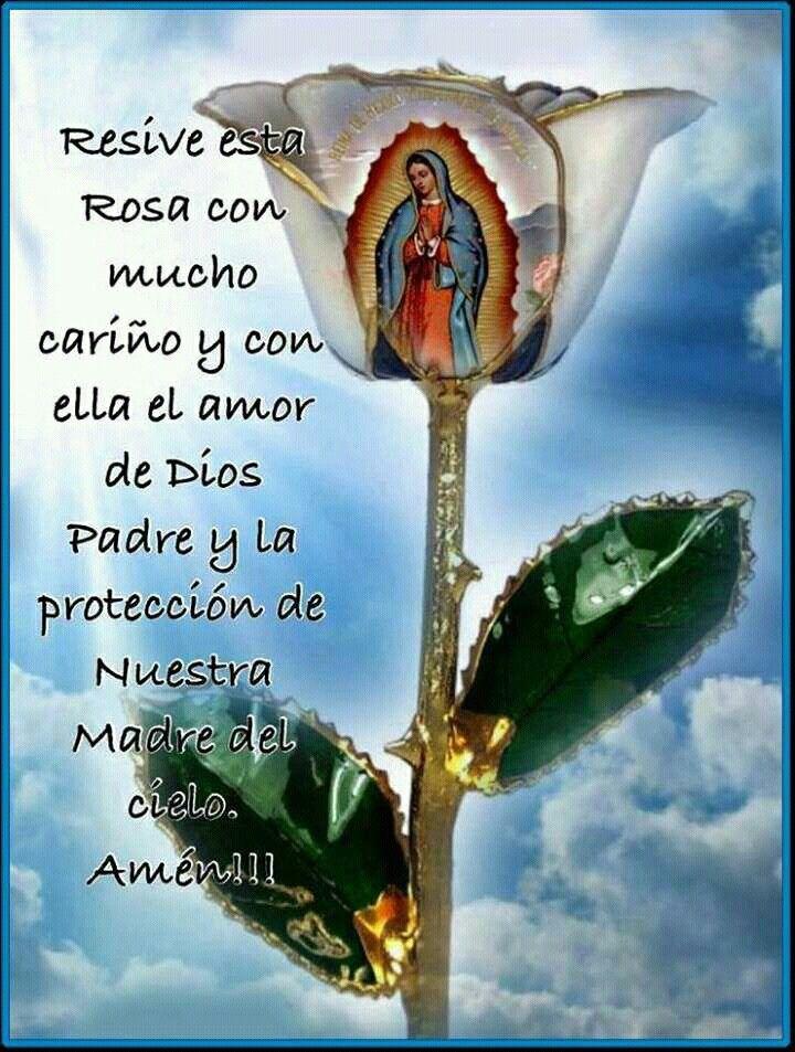 La Virgen De Guadalupe Cute Pastel Wallpaper Jesus Pictures