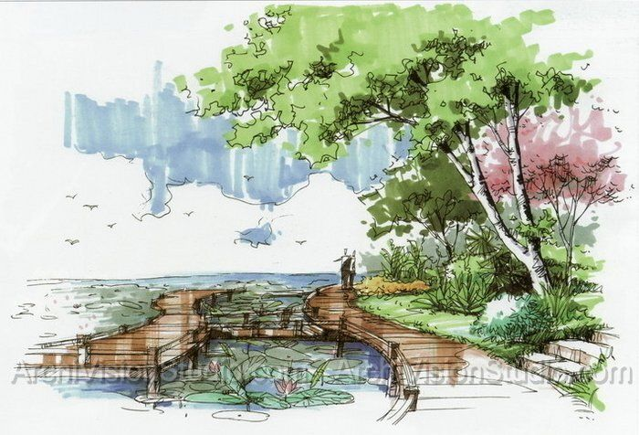 Florida landscape design ideas presentation for Garden design sketches