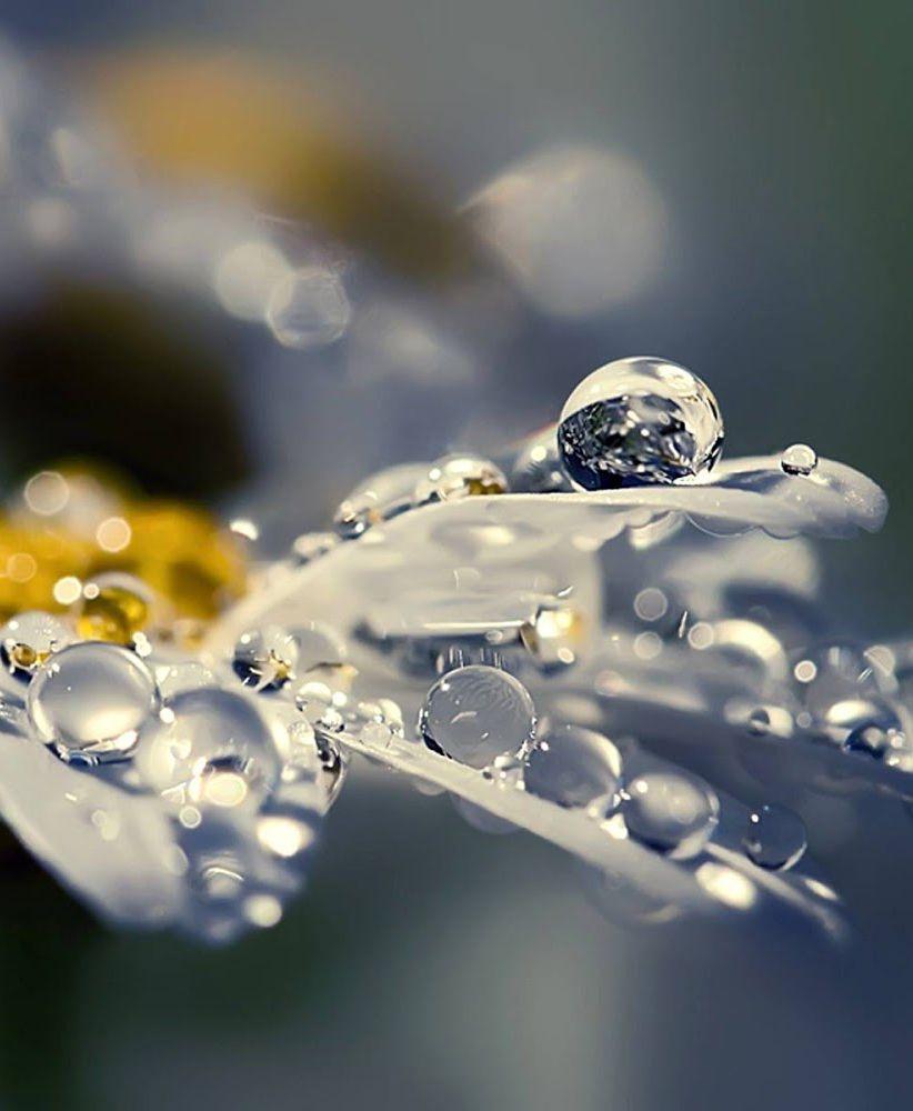 Dance In The Rain Rain Wallpapers Beautiful Wallpaper Hd Rain