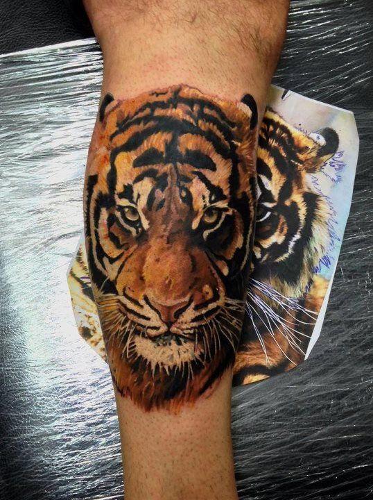Fantastic color tiger tattoo Tiger tattoo design, Tiger