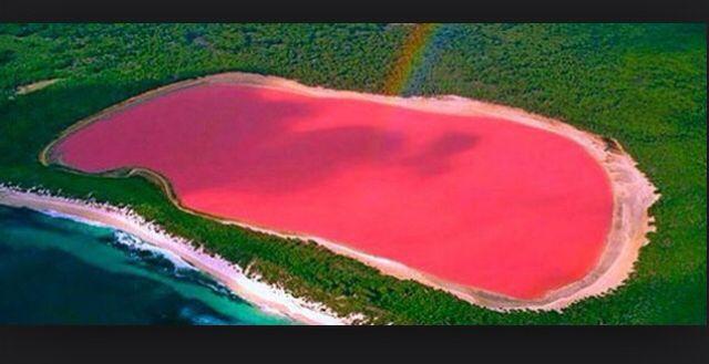 Pink Lake In Western Australia Beautiful Area Great For Swimming