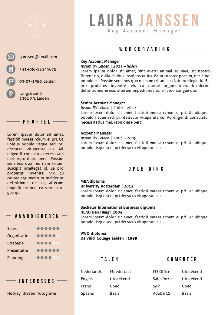 CV Sjabloon 25b | Cv template, Template and Cv ideas