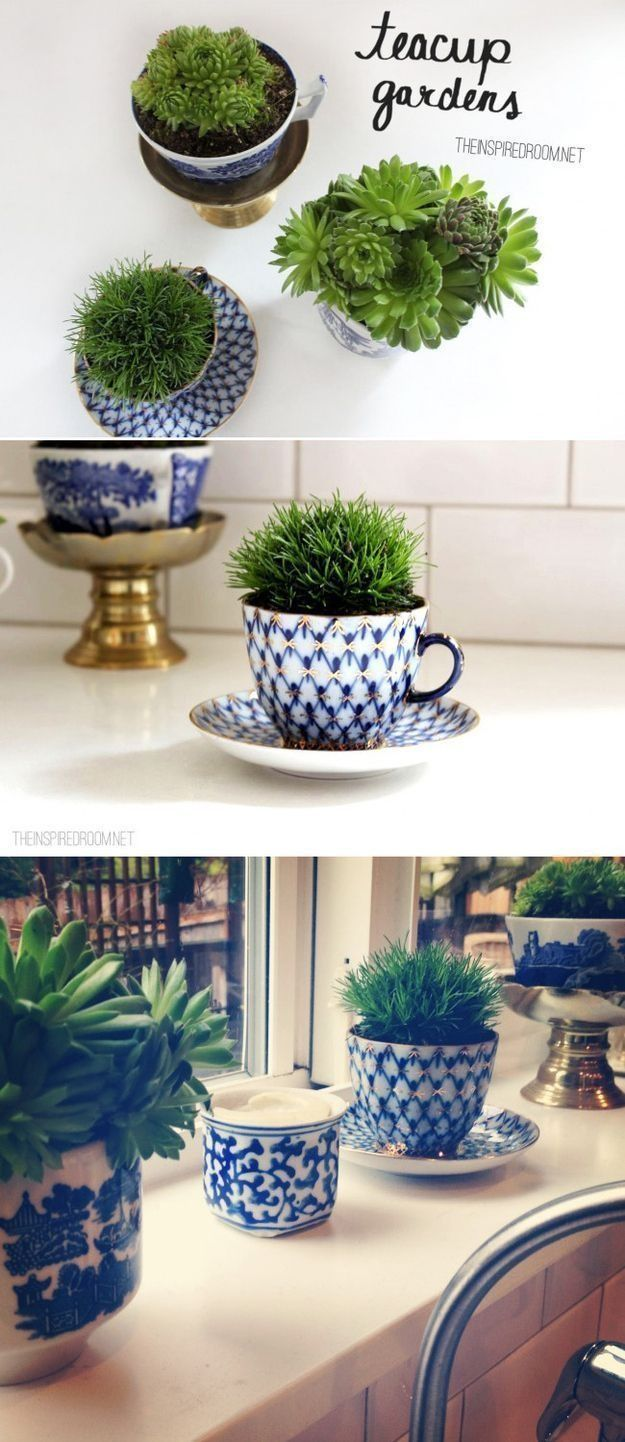 Fill your extra counter and windowsill space with these adorable teacup gardens. #apartmentgardening