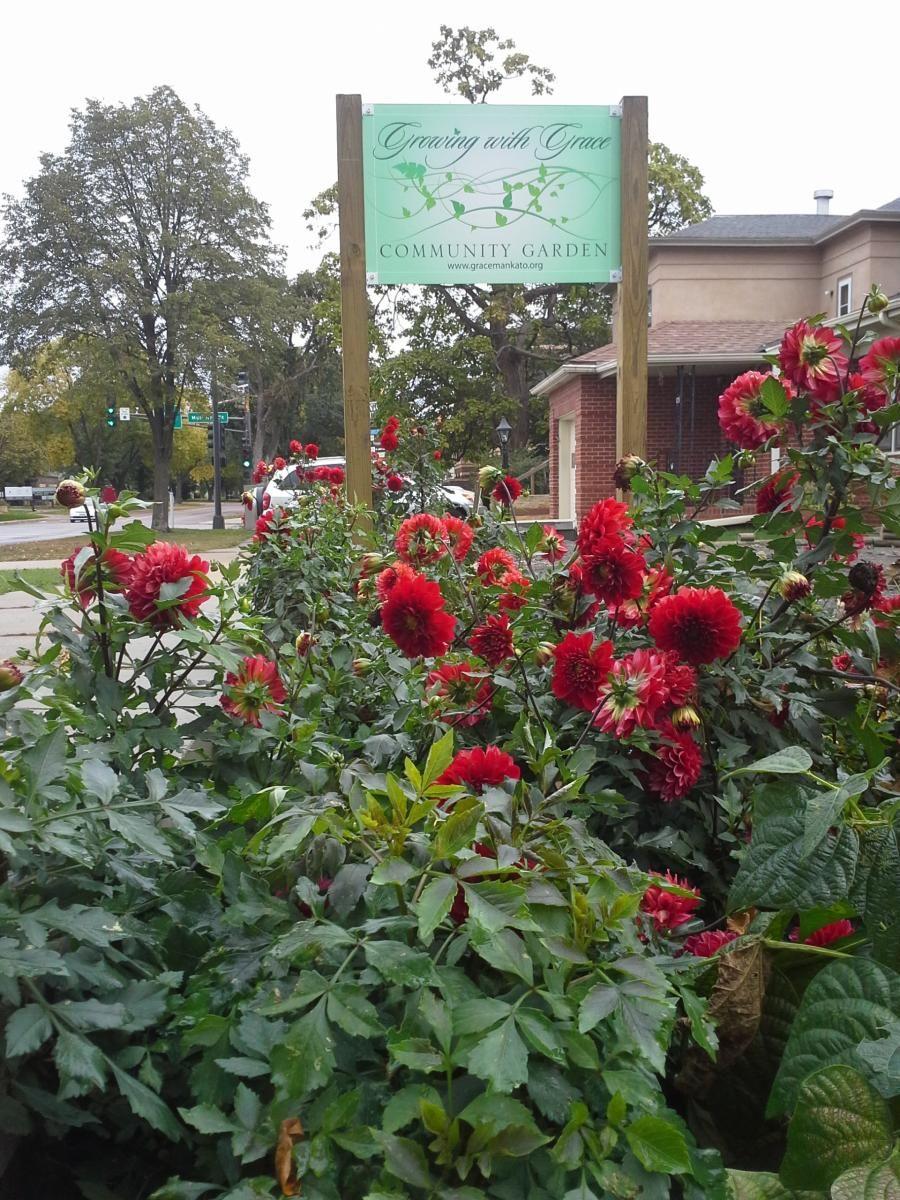 Growing with Grace Community Garden | Grace Lutheran Church