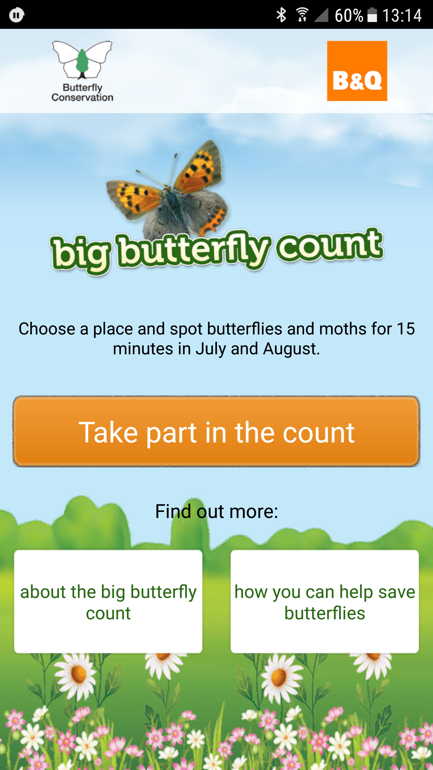 Pin by Branch Out World on Minibeasts Big butterfly