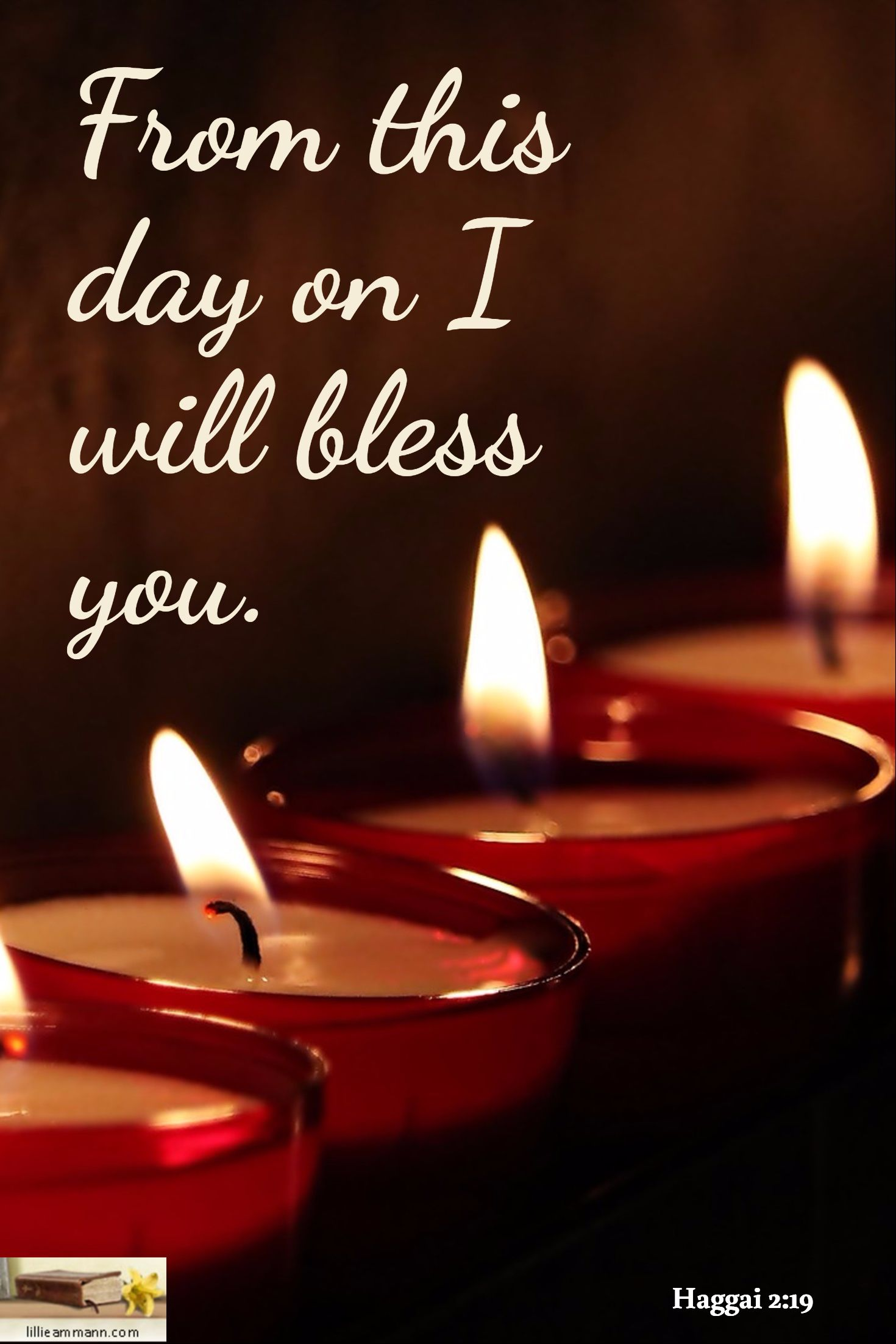 From This Day On I Will Bless You Haggai 2 19 Birthday Candles Blessed Scripture